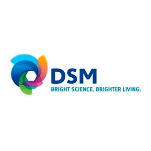 DSM León